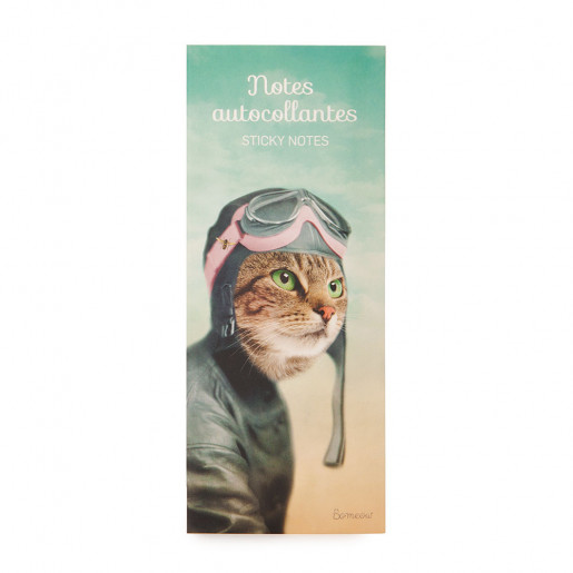 Notes autocollantes L'exploratrice So Meow