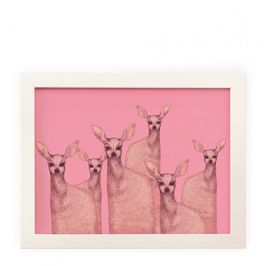 Reproduction | Pink doe