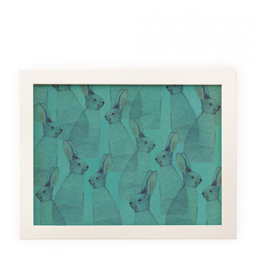 Reproduction | Turquoise rabbits