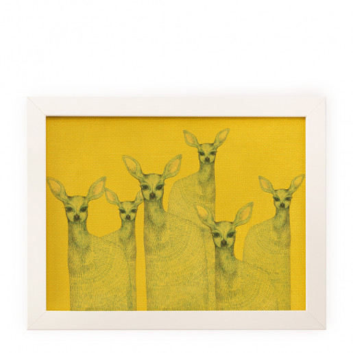 Reproduction | Yellow doe